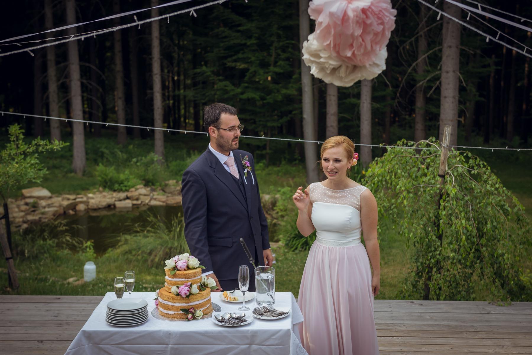 Miška a Radek - svatební foto Lelekovice u Brna